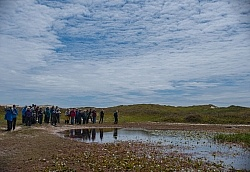 The Fresh Water Ponds of Sable Island
