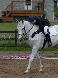 Canadian Sport Horse, Cornerstone Short Course Event Cornerstone Short Course June 2015