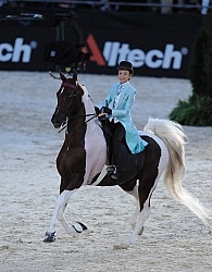 Alltech WEG Opening Ceremonies Saddle Seat
