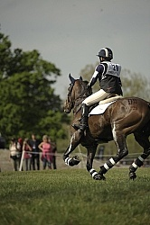 Equine Athlete