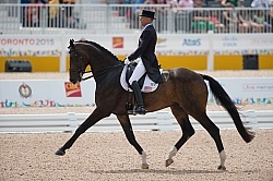 Steffen Peters and Legolas 92 GP Freestyle Gold  at Pan Ams Toro