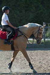 Kids Riding Dressage