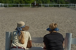 Horse Shopping,Watching Being Ridden