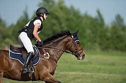 Equine Athlete, Eventing Lower Level
