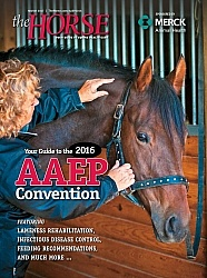 The Horse AAEP Wrap Up Cover