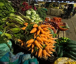 Local Market in Aloag Ecuador