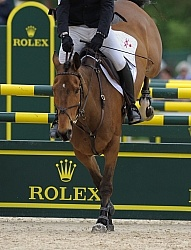 Peter Barry and Kilroden Abbott Rolex 2011 Arena Footing