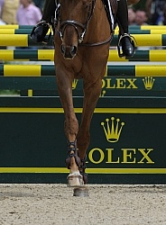Rolex 2011 Arena Footing