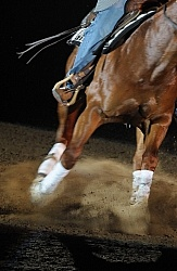 Arena Footing for Reining