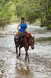 Spring Summer Trail Riding, Belize