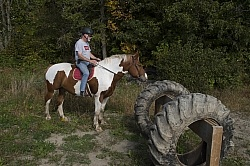Joe and Major Checking out the Hanging  Tires at Horse Country C