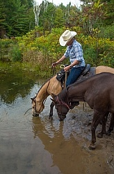 Ponying in the Ganaraska Forest Ponying a Horse to Water