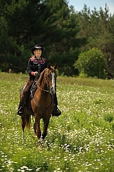 Western Trail Riding Spring Summer