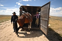 Trailering the horses after the Ride to the Wild horses with Blue Sky Sage