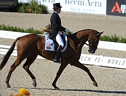 Phillip Dutton and Woodburn WEG 2010