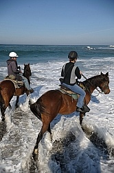 Riding on the Beach at Ricochet Ridge Ranch