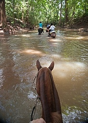 Riding in the River