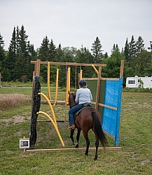 Horse Country Campground Riding the Obstacle Course at Horse Country Campgrounds