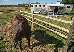 Horse Coiuntry Campground Site Set up