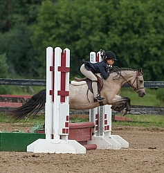 Short Stirrup Over Fences