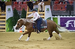 Mandy McCutcheon and Yellow Jersey Bronze Ind Reining WEG 2014 N