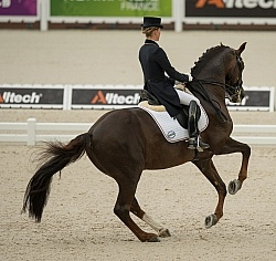 Helen Langehanenberg and Damon Hill NRW Team Grand Prix WEG 2014