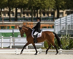Rebecca Hart and Schroeters Romani WEG 2014 Normandy, France