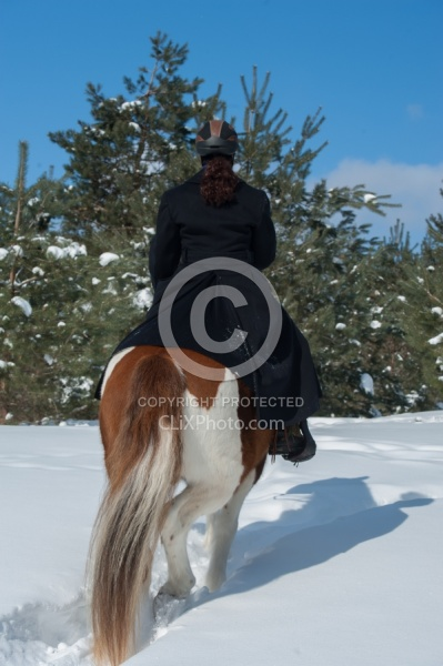 Winter Trail Riding