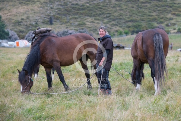 The Horses Graze at Dingleburn Station on the Land of the Long White Cloud Ride with Wild Womens Expeditions and Adventure Horse Trekking New Zealand