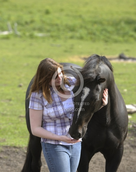 Horse and Human Bond Quarter Horse