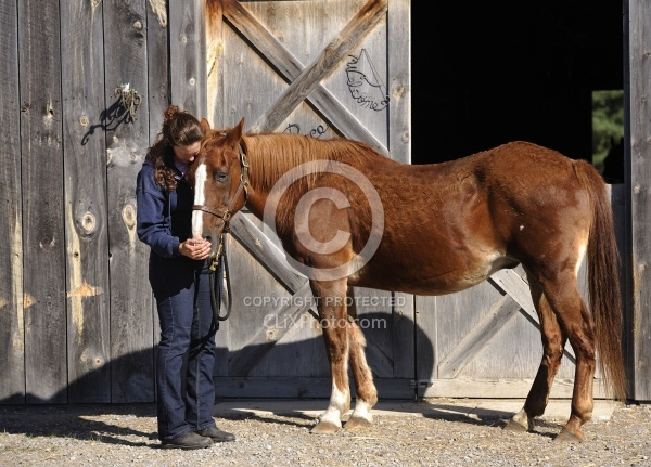 Senior Horse with Owner