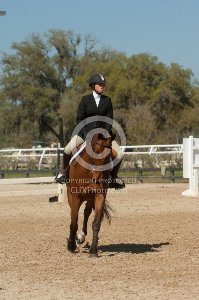 Hunter in Ring on Flat