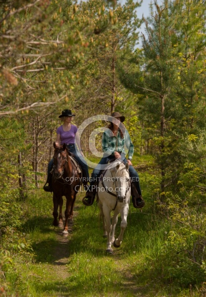 Trail Riding in the Ganny, Anne vavra Trail Riding Spring Summer